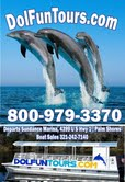 Dolphin & Manatee Sightseeing Tours